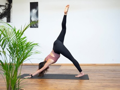 Yoga Vinyasa Power